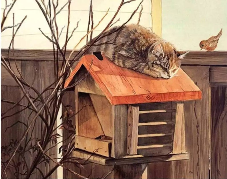 Paint by Number Kit Fast Shipping Cat sleeping on Birdhouse #paintbynumbers DIY