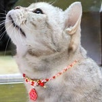CARNATION【COLLAR】Japanese kumihimo cat collar with safety magnet