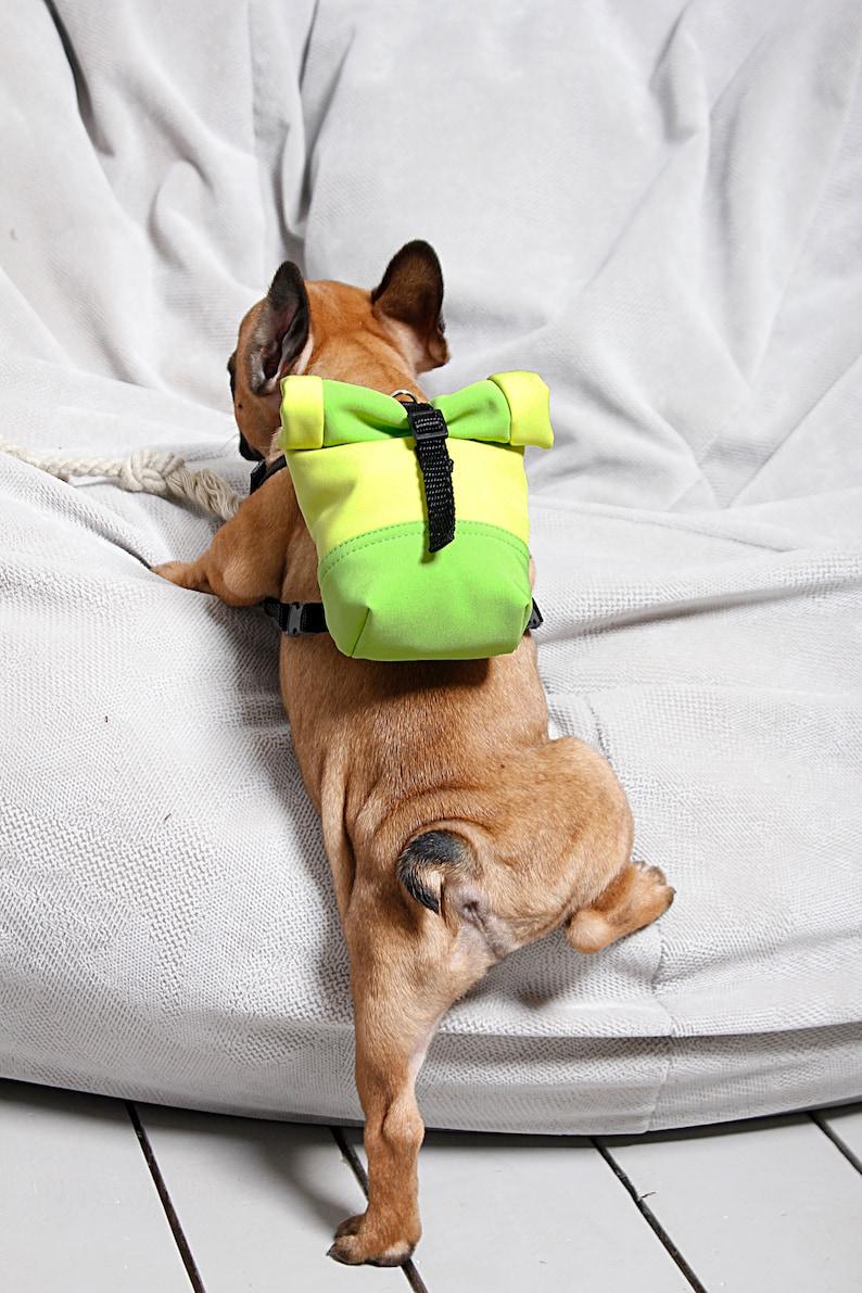 dog fashion harness French bulldog backpack harness french bulldog puppy harness by BestFriendFinds snackies bag costum dog harness