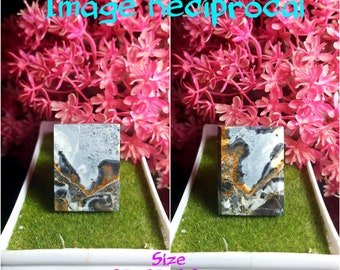 Landscape Image /& Plants 4 Pcs Cabs Maligano Jasper