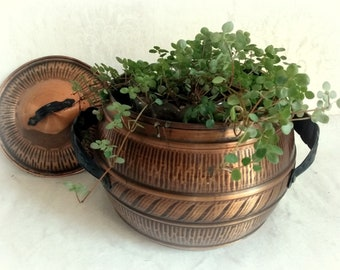Old beautiful pot with lid copper colored
