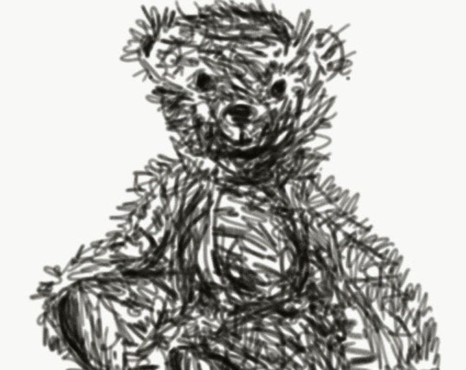 Illustration of Mohair bear cub