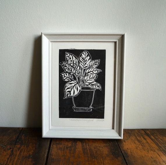 Original Linocut print 'Calathea Makoyana' Peacock Plant