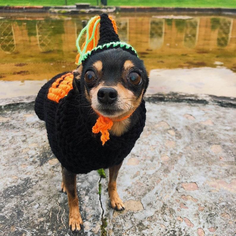 dog sweater Handmade Halloween dog costume hand knitted dog sweater