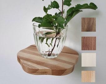 set plant shelves round wooden shelf circle small floating shelf succulent shelf