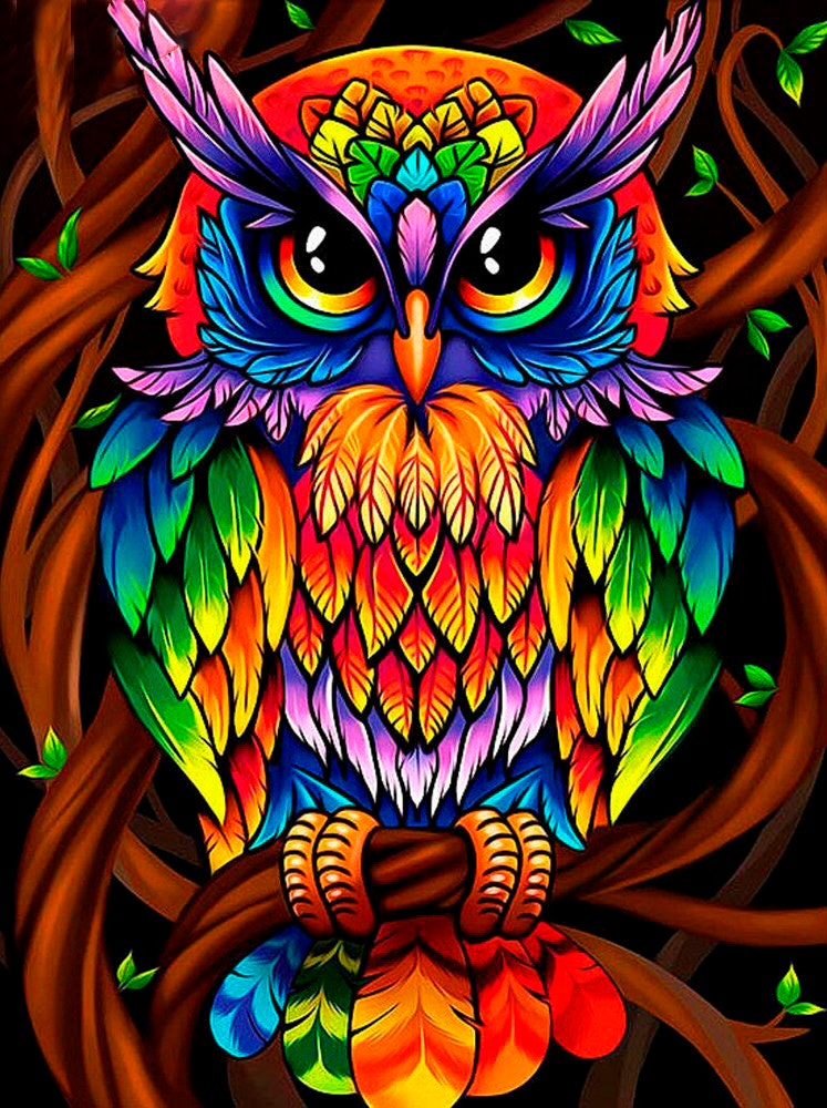 Diamond Painting Embroidery Portrait Owl With Christmas Hat Design House Display