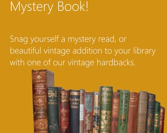 Literary Gifts for Book Lovers Mystery Grab Bag for Geeks Lucky Literary Dip Box