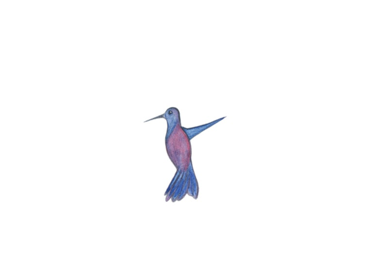 Hand painted digital PNG/'s-instant download-multicolored birds-nature Watercolor Hummingbird Clip Art-colorful hummingbirds