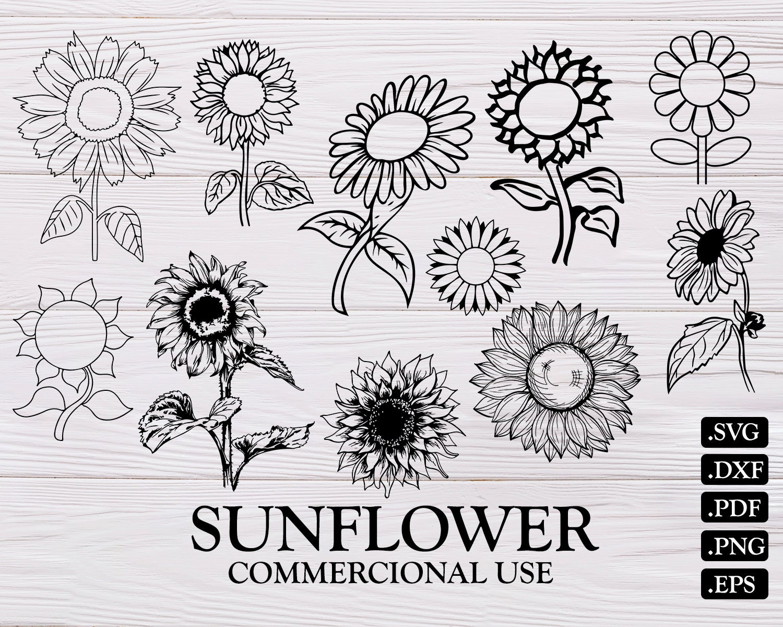 Download SUNFLOWER SVG flower svg sunflower clipart sunflower | Etsy