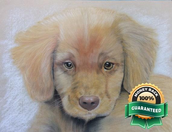 Custom Pet Memorial Drawing, Photo to Sketch, Pet Love, Personalized pet gift, Pet Remembrance, Dog Custom Art,