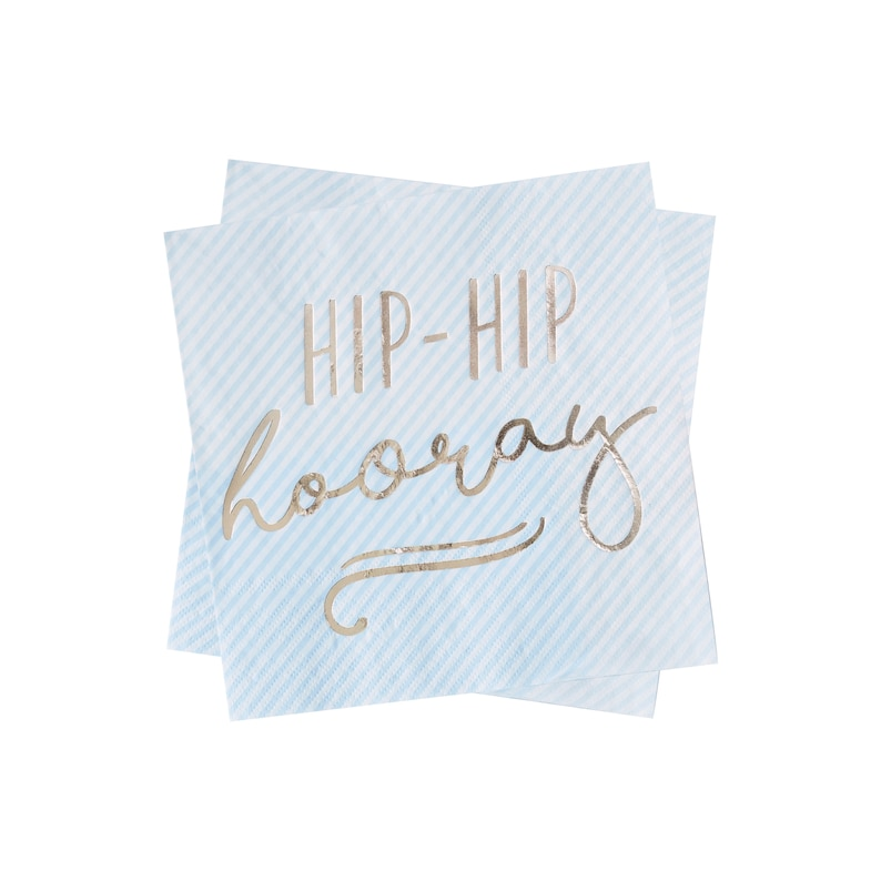 Gold Foiled Hip Hip Hooray Blue Paper Napkins Birthday Napkins Pastel Party Blue Party Decorations Blue Party Napkins