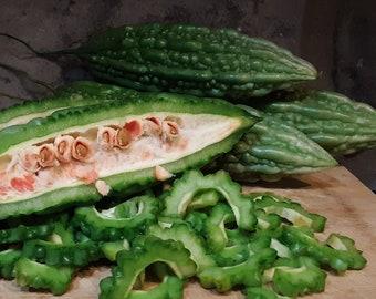 Bitter Melon Seeds (FREE SHIPPING)