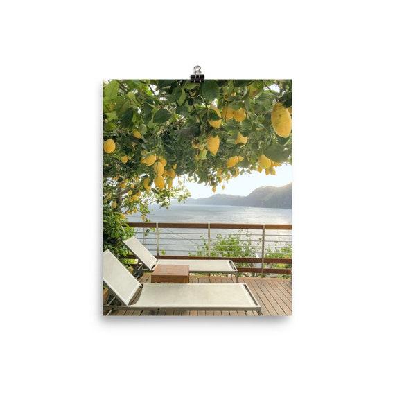 Miraculous Amalfi Coast Print Lemon Tree Print Lemons Mediterranean Sea Italy Landcape Amalfi Print Positano Sorrento Fudore Praiano Onthecornerstone Fun Painted Chair Ideas Images Onthecornerstoneorg