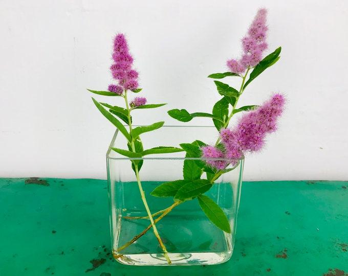 """kleine Glasvase """"Rosa Spirea"""" 13x13x9 cm eckig"""