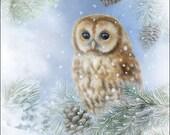 Paper napkins for decoupage, Tawny Owl, set of 2