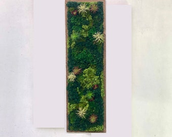 Custom moss wall art with preserved and natural moss. Framed and stained to order,