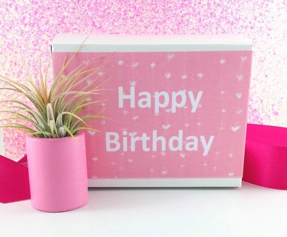 Missing You Gift Get Well Gift  Birthday Gift Romantic Gift Girlfriend Gift Lover/'s Gift Air Plant Troll Doll Hug Little Girl Gift