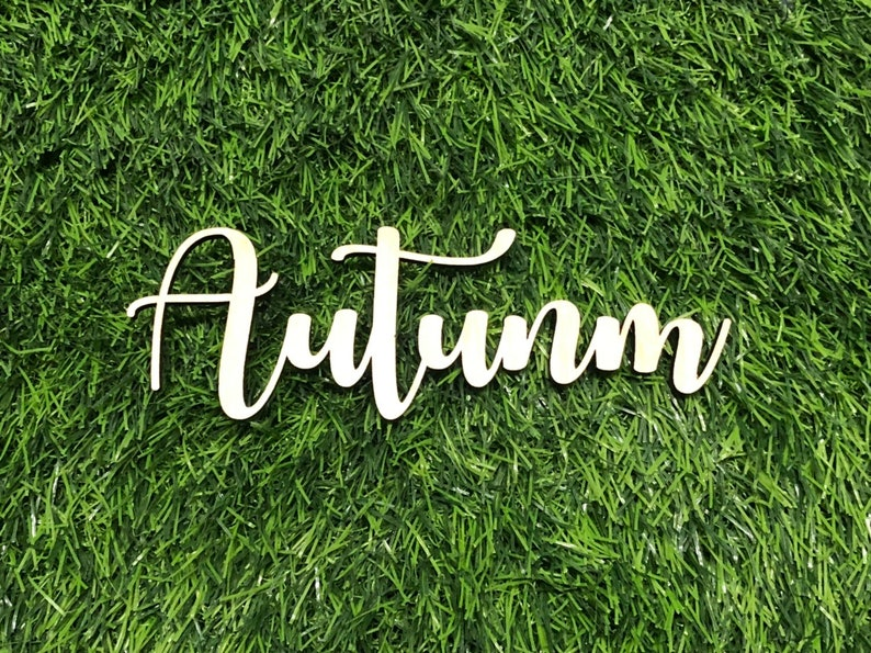 Custom Wood Sign, Autumn in November font for Name Sign, Birthday Sign,  Nursery Sign, Backdrop Sign, Office Wall, Wedding Sign