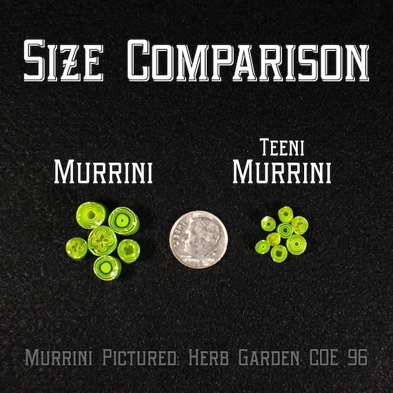 and Straws Murrini COE 90-4 oz Oops Orphans - Bigs B.L.O.O.S Littles