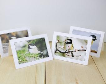 Greeting Cards, Set of Four, Birds, Black-capped Chickadees