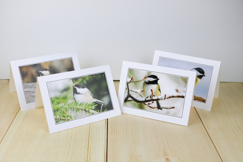 Black-capped Chickadee Bird Greeting Cards Set with image 0