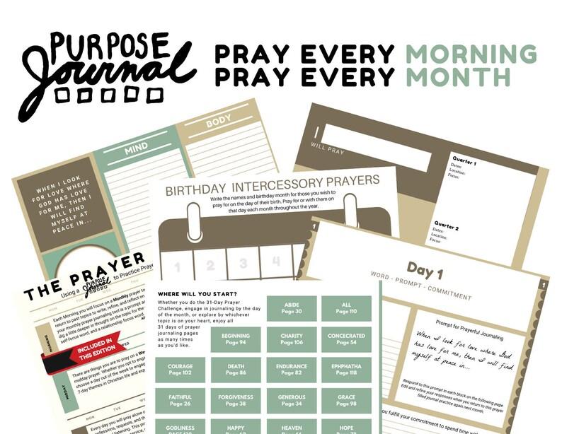 Purpose Journal 31-Day Prayer Guide Wire-Bound Journal 140 image 0