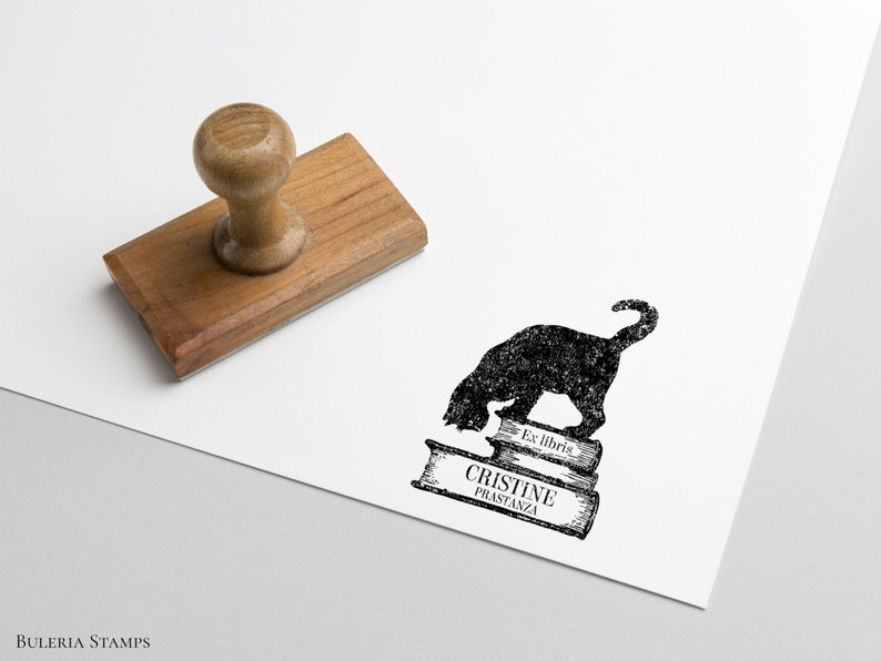 Library Stamp custom rubber stamp calligraphy stamp ex libris Book stamp cat with books Ex-Libris Rubber Stamp ex libris stamp
