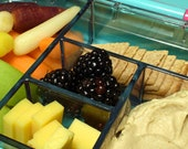 Snack pack: Blackberry, Gouda cheese, hummus, carrots, apple and crackers in a storage container.  Fruit and Mediterranean lunch tray.