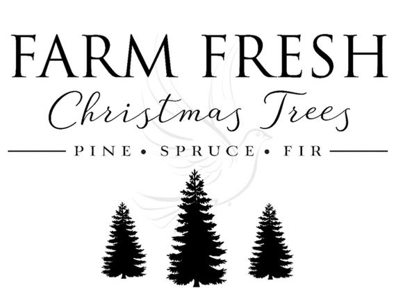 Farm Fresh Christmas Trees Svg.Farm Fresh Christmas Trees Pine Spruce Fir Svg And Png File