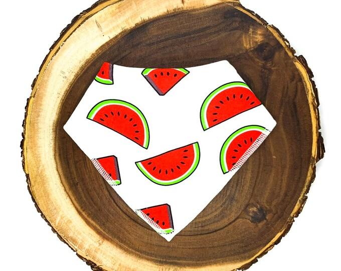 Watermelon Bandana