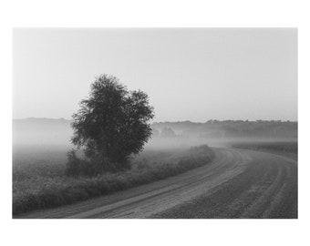 Country Road Fog - 8x10 Print