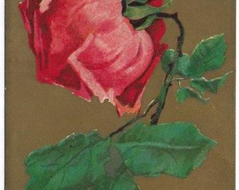FLORAL ROSE Used Vintage Postcard Posted on 19th November 1906 Published by I J F Hartmann