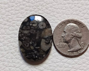 Stone Crinoid Fossil Marble Slab 4.81oz Cabbing Lapidary Gemstone Rough Cabochon Slab #0303