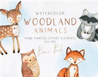 Watercolor Woodland Animals Clipart, Watercolor Forest Animals Clip Art, Fox, Owl, Deer, Raccoon Clipart, Nursery Wall Art, Baby Shower Gift