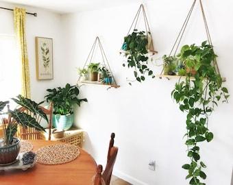 Hanging Maple Plant Shelf Wall