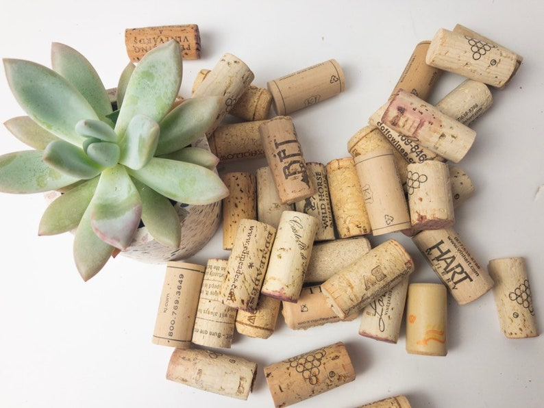 Decorative Wine Corks All Natural Wine Corks Made Of Cork Recycled Wine Corks