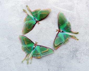 Silk luna moth hair clips with 3d double-layer wings - hair accessories for women and girl gift