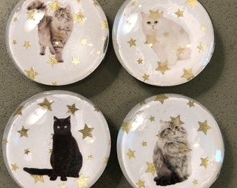 Cats, Cat magnets, cat people, Kitchen decor, office organization, home style, stary night, glass decorative magnets, gift, birthday