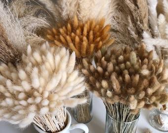 BUNNY TAILS 50 pcs - Natural Dried Lagurus Pampas Grass Boho Wedding Decor Bridal Bouquet Bohemian Plant Wedding favors