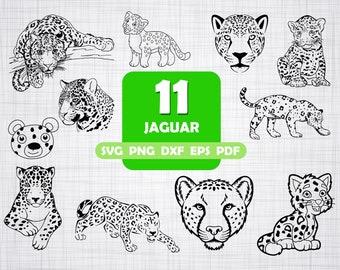 65ebf5cd8fd Jaguar svg