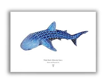 Whale Shark - Limited Edition Fine Art Print