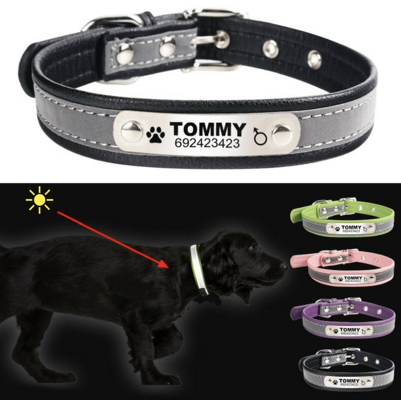 Dog collar engraved Pet Id Tag Pet Supplies Leather Collar Dog collar personalized Dog Collar Reflective Dog collar embroidered