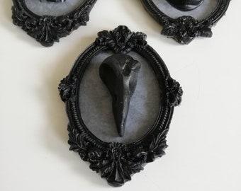 58685e73f2e Cadre baroque résine corbeau crâne naruralisé résine gothique décoration  mur sorcière taxidermie entomologie Cabinet curiosité tête moulage