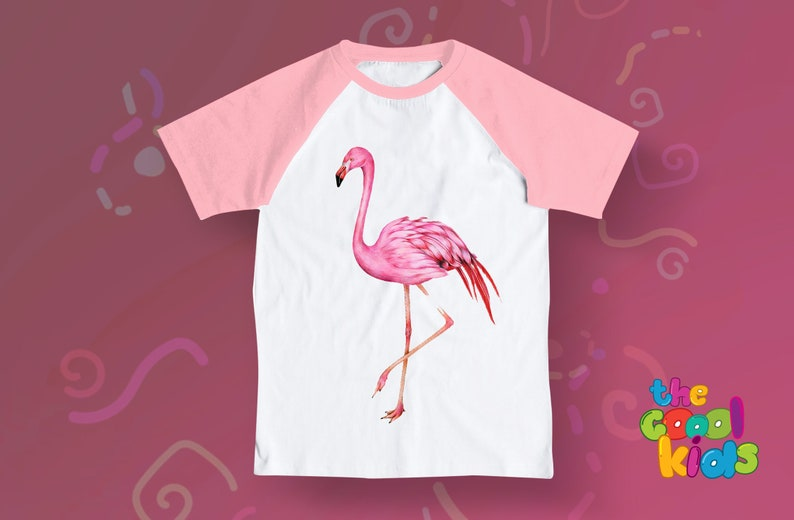35035693 Cute Flamingo raglan sleeve t shirt for your little girl Baby | Etsy