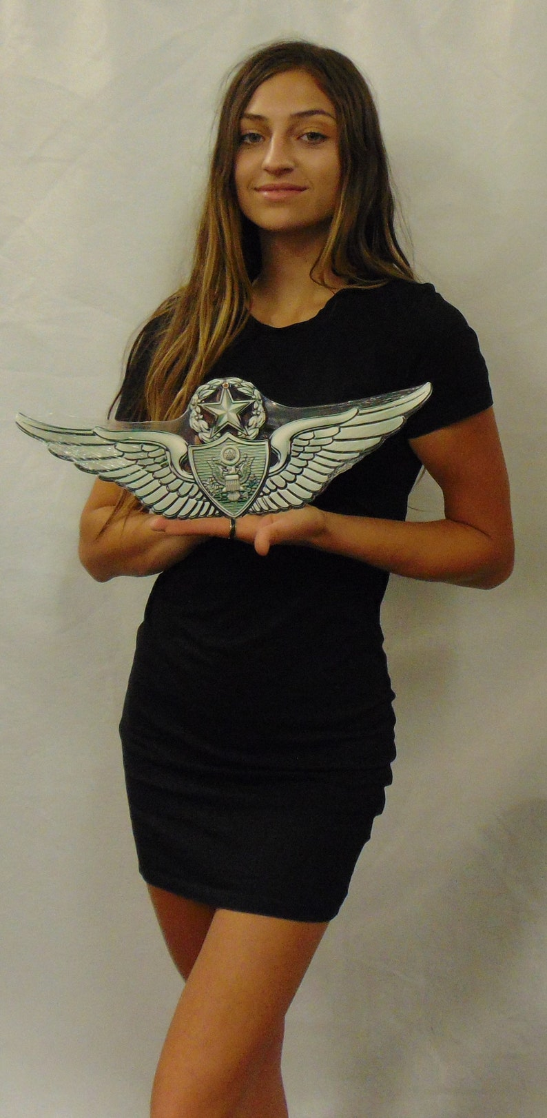 Army Master Aircrew MOS Wings all Metal Sign (Small) 7 x 3