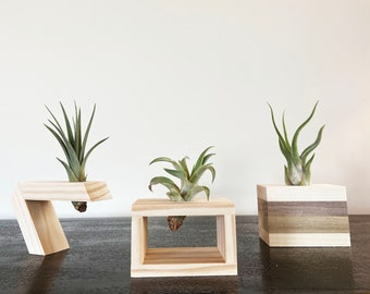 Air Time:  3-Pack of Great Air Plant Holders
