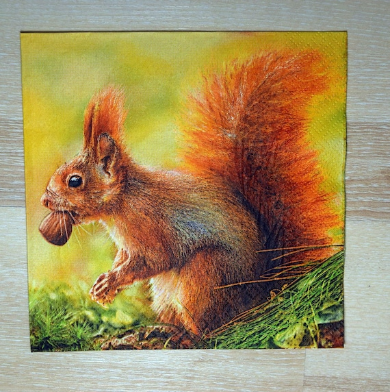 56 forest design 4 Single paper decoupage napkins Squirell