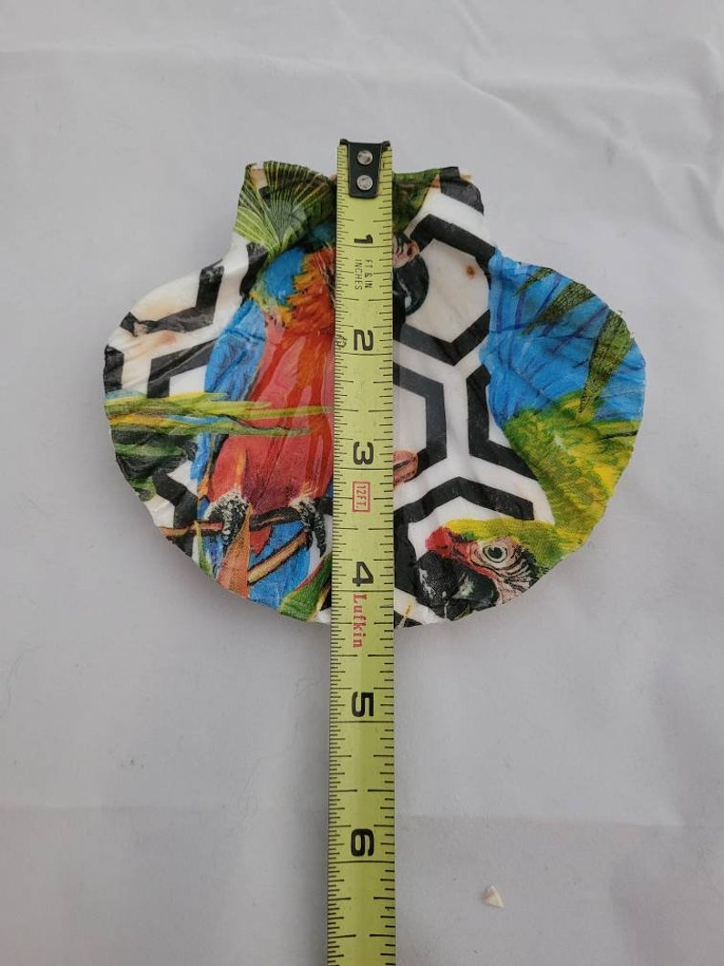 Decoupaged Scallop Shell Candle Holder Soap Dish Jewelry Dish Vibrant Partot Design Shell Art Trinket Dish Ring Holder
