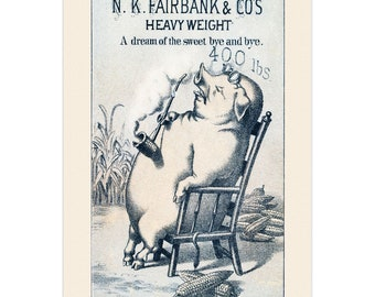 Set Of 5 - 3.5x5 Or 5x7 - Blank Folded Vintage Advertising Cards And Envelopes - Pig Sitting In Chair Smoking A Corn Pipe And Dreaming