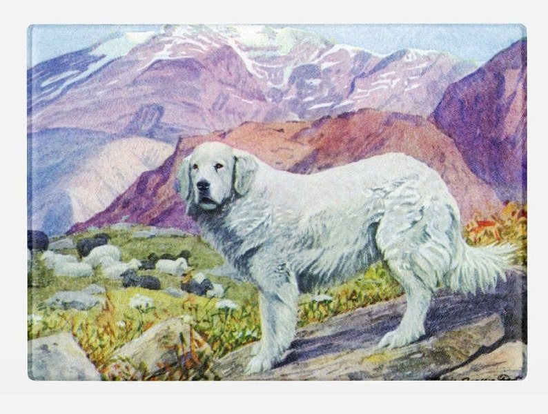 Tempered Glass Cutting Board 1919 by Louis Agassiz Fuertes Great Pyrenees ca
